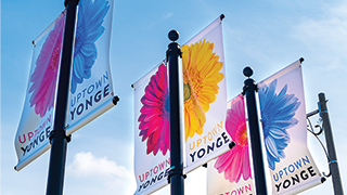 Yonge and Eglinton Flags
